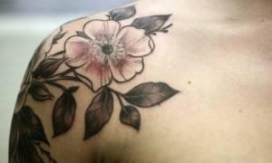 Татуировки на плече для девушек: птицы, животные, насекомые, узоры, надписи, маленькие, круглые, значения и эскизы. Фото лучших тату