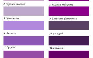 Фиолетовый цвет: сочетание в одежде, что означает, кому идет, с чем носить, оттенки фиолетового