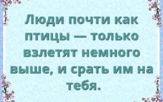 Статусы про жизнь со смыслом для ВК, FB, ОК, красивые, умные, мудрые, короткие, до слез, грустные, смешные, позитивные, душевные