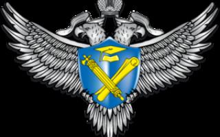 Школа ногтевого сервиса Decorus в Казани — обучение маникюру, педикюру, наращиванию, дизайну