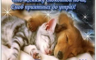 Пожелать любимому Спокойной ночи красиво своими словами, романтические СМС, в прозе, стихах, красивые картинки