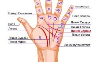 Линии на ладони. Значение на правой, левой руке, что означают, хиромантия в картинках простым языком для женщин и мужчин. Фото
